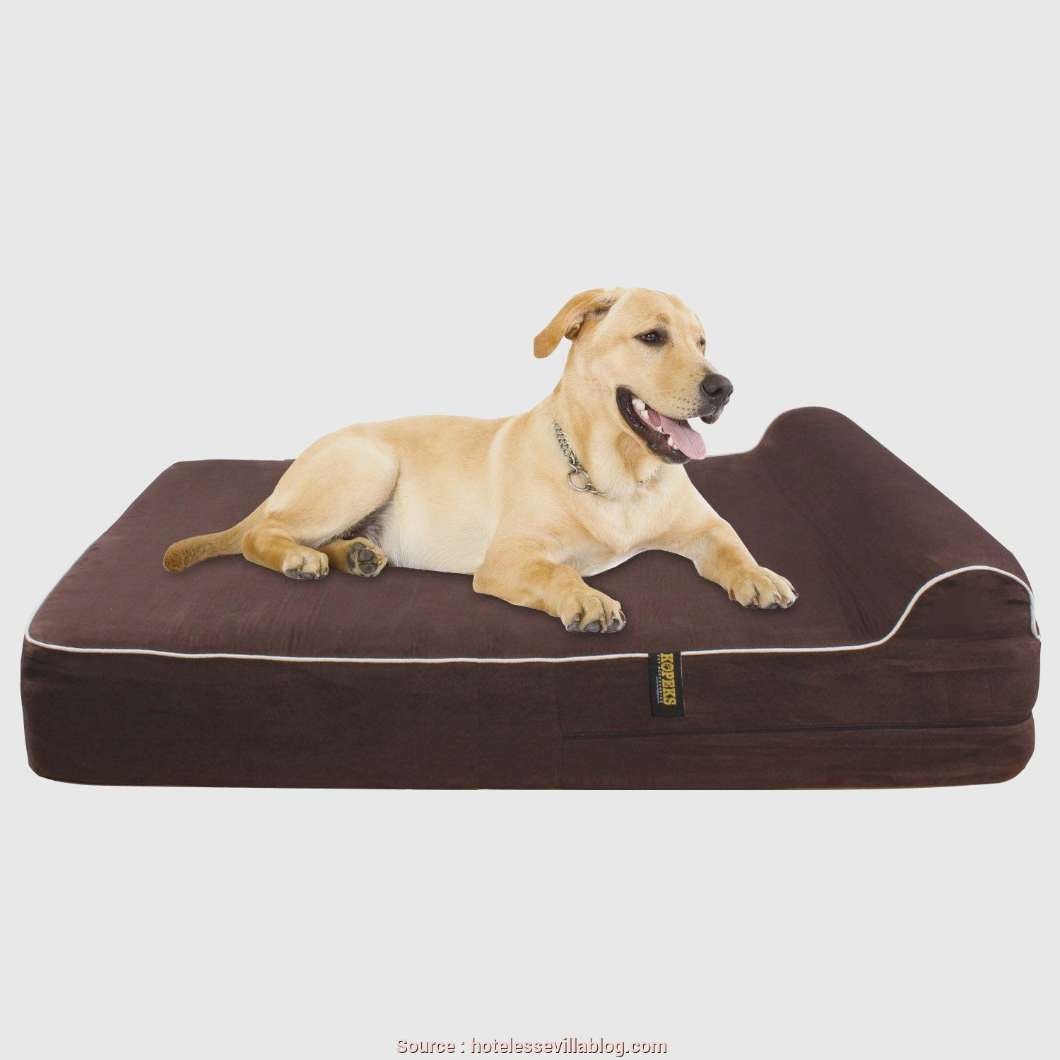 """Cuscini Cani Grandi, Migliore Extra 7"""" Thick Orthopedic Memory Foam, Bed With 3 Pillow"""